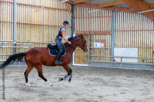 Deurstickers Paardensport petit galop en manège