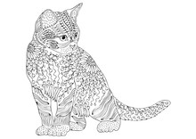 Hand Drawn Cat. Sketch For Ant...