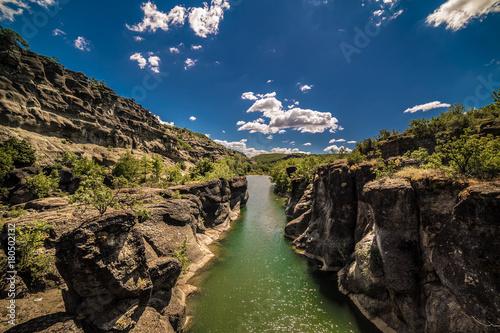 Plakat Tranquil Nature Scene z małej rzeki