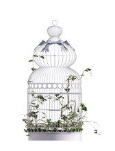 Vintage Bird Cage Isolated On ...
