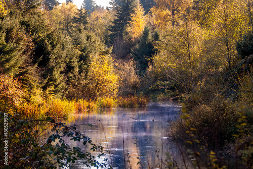 Poster Autumn River with Fog rising on a Fall Morning