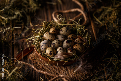 Quail eggs in hay nest