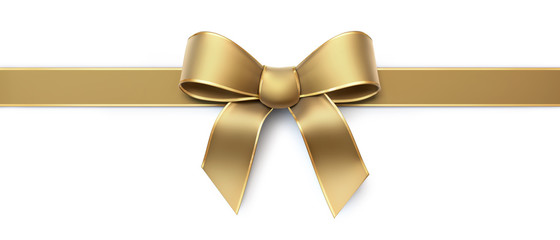Golden silk ribbon with gold border - horizontal