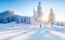 Colorful Winter Panorama In Th...