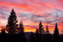 Majestic Sky, Pink Cloud Again...