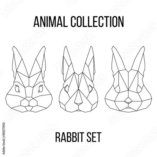 Zestaw geometrycznej głowy królika na białym tle rocznika element projektu ilustracji wektorowych