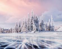 Mysterious Winter Landscape Ma...