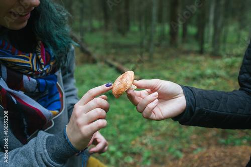 Crop person showing mushroom to crop woman