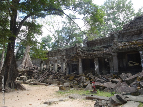 Photo  Ancient ruin at Ta Prohm Temple in Siem Reap, Cambodia
