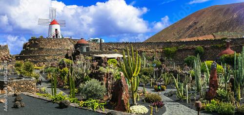 Tuinposter Canarische Eilanden Cactus garden - popular touristic attraction in Lanzarote, Canary islands