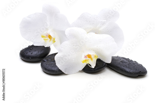 Staande foto Spa Spa white orchid with massage stones on white