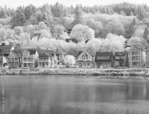 Infrared image of private homes around a pond in Astoria Oregon Wallpaper Mural