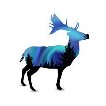 Silhouette Of Deer With Pine Trees On The Background Of Blue Sky. Northern Lights.