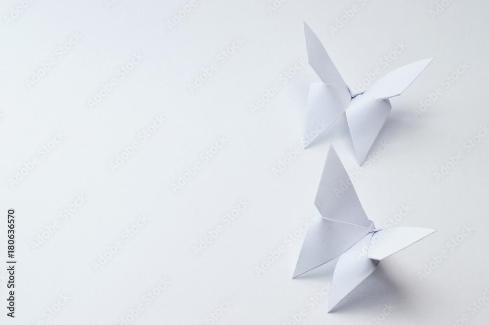 Fototapeta origami butterflies on white background