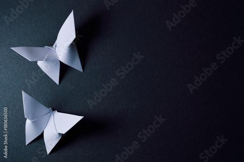 Obraz na plátně  origami butterflies on dark background