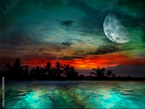 Photo sur Toile Marron chocolat The ocean, sunset and moon