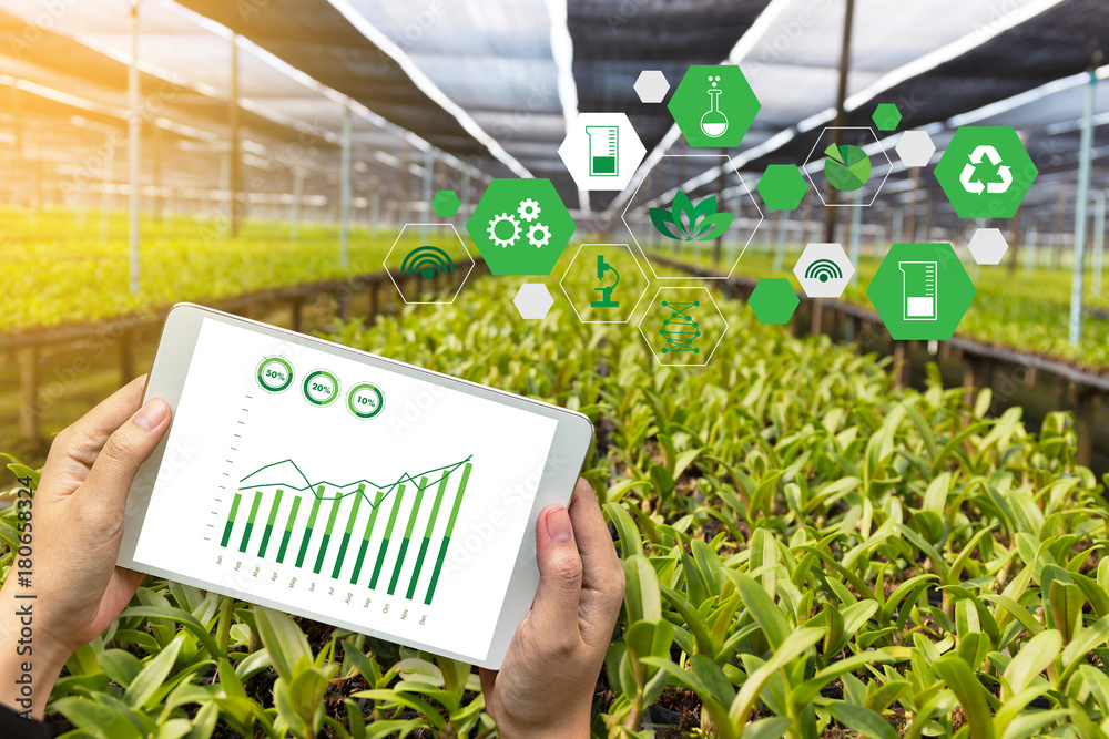 Fototapety, obrazy: agriculture technology concept man Agronomist Using a Tablet Internet of things  report