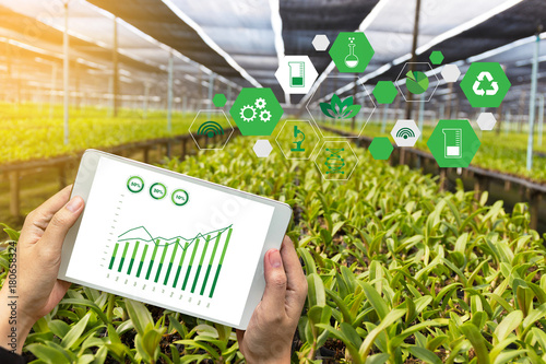 agriculture technology concept man Agronomist Using a Tablet Internet of things Fototapeta