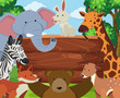 Wild animals around wooden board