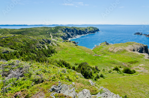 Cuadros en Lienzo The shore of Newfoundland