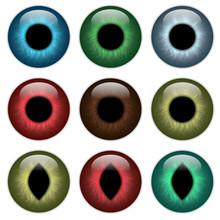 Set Pupil, Contact Lenses