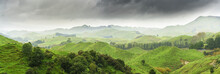 Panoramic Image Of Beautiful Scenery Of Mountains Along The Way On Whanganui River Road In National Park In Autumn , Whanganui , North Island Of New Zealand