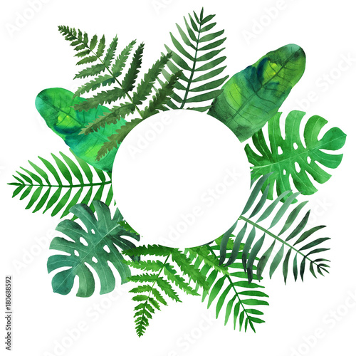 Tropical Leaves Arrangement Round Shape On White Background Watercolor Painting Buy This Stock Illustration And Explore Similar Illustrations At Adobe Stock Adobe Stock Tropical rainforest plants that can be used in the garden to add color, diversity and charm. tropical leaves arrangement round shape