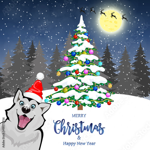 Beautiful Dog In Front Of Christmas Card Merry Christmas