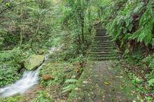 Ancient Stairway In Zhangjiajie Forest Park.