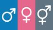 Leinwandbild Motiv gsn1 GenderSignNew gsn - Drittes Geschlecht im Geburtenregister - weiblich - männlich - inter / divers - Intersexuelle Menschen - Intersexualität - Zeichen - banner 16zu9 g5650