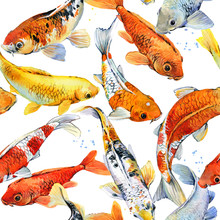 Watercolor Illustration Of Koi...