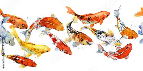akwarela-ilustracja-ryba-karp-koi-wzor
