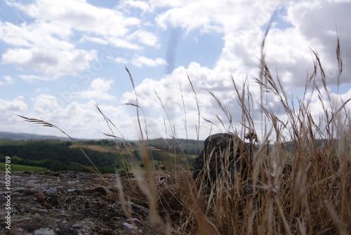 Foto auf AluDibond Nordsee SONY DSC