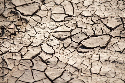 Fotografie, Obraz  Cracked Dry Mud and Soil
