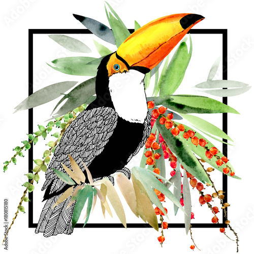 Foto op Canvas Toekan toucan bird and tropical plant
