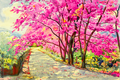 Plakaty Painting watercolor landscapem of Wild himalayan cherry