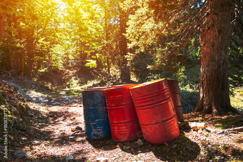 Fotografie, Obraz  Toxic waste barrels in the forest
