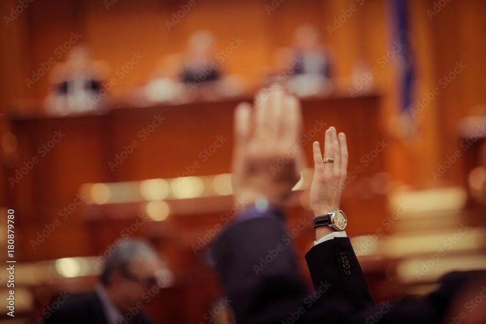 Fototapety, obrazy: MP voting