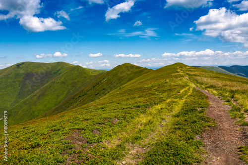 Fototapety, obrazy: tourist footpath through mountain ridge. beautiful summer landscape under the gorgeous blue sky with some clouds