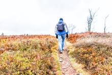 Uphill Trail Path Hill Meadow ...