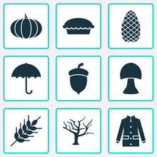 Season Icons Set. Includes Icons Such As Gourd, Cedar, Timber And Other.
