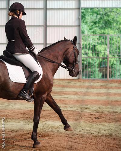 Canvas Prints Horseback riding Jockey rides horse in arena