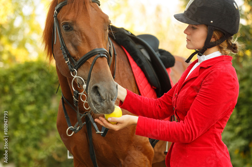 Canvas Print Jockey to feed horse with apple
