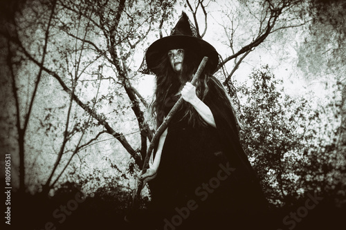 Fotografie, Obraz  Witch standing with her broom in a rural wooded setting, shot from below