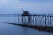 France, Bourgneuf Bay, Les Moutiers-en-Retz, fishery.