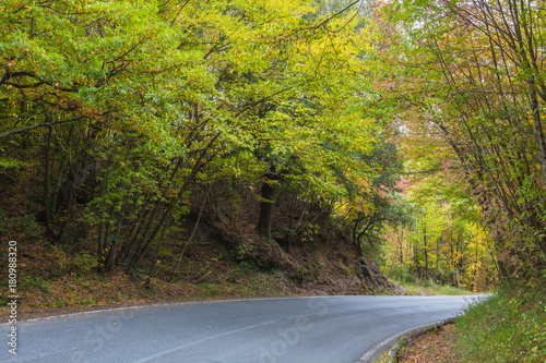 The curved road through autumn forest in the Tuscany mountains, Italy
