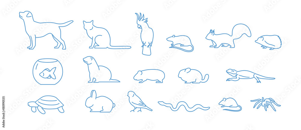 Fototapeta Collection of pet icons drawn with blue contour line on white background. Set of domestic animal linear symbols. Vector illustration.