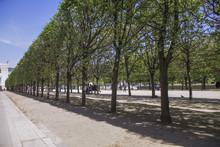 Tuilleries Garden