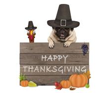 Funny Turkey And Pug Dog Weari...