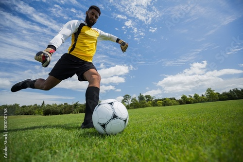 Goalkeeper kicking football in the ground Canvas Print